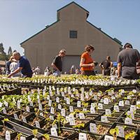 Donate to the Fullerton Arboretum