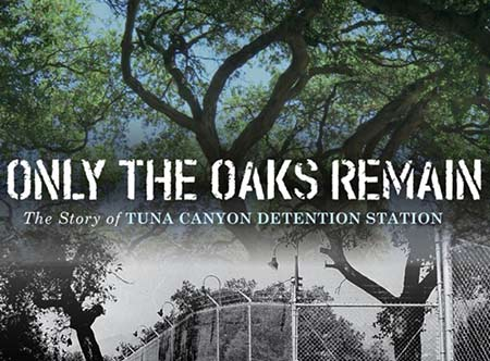 only the oaks remain exhibit