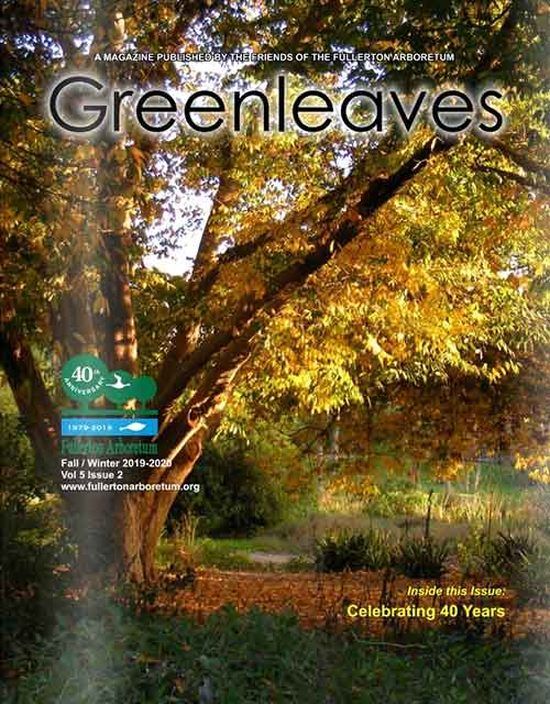 Greenleaves Fall/Winter 2019-2020