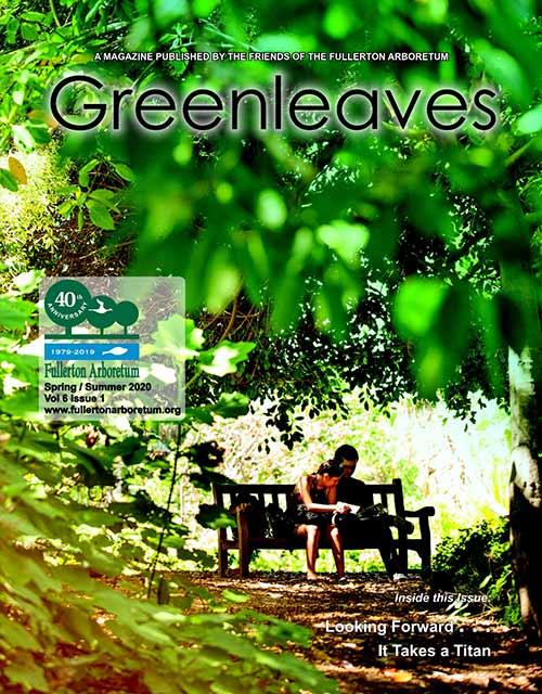 Greenleaves Spring/Summer 2020