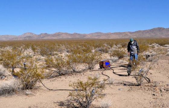 Macias study site mojave desert